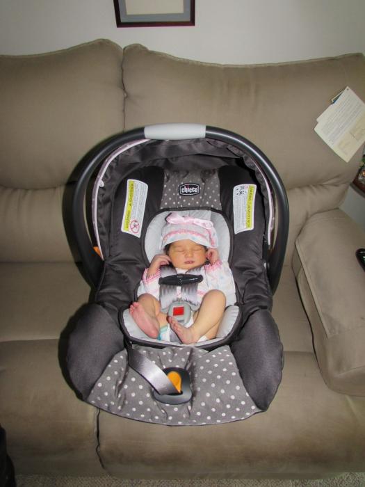 chicco car seat infant insert. Black Bedroom Furniture Sets. Home Design Ideas